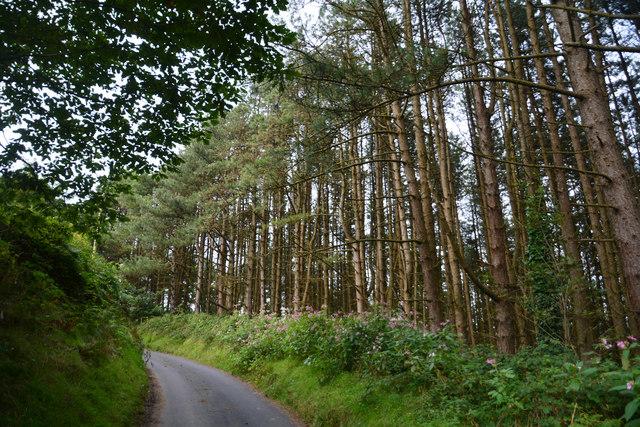 Neath Port Talbot : Road