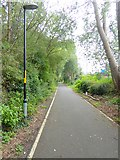 NZ2362 : Teams Cycleway by Oliver Dixon