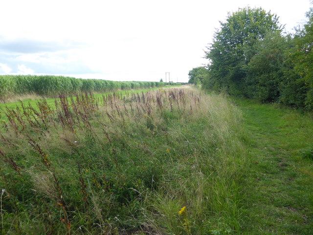 Footpath near Brant Broughton