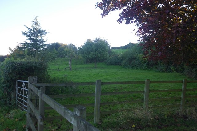 Orchard, Felton Court