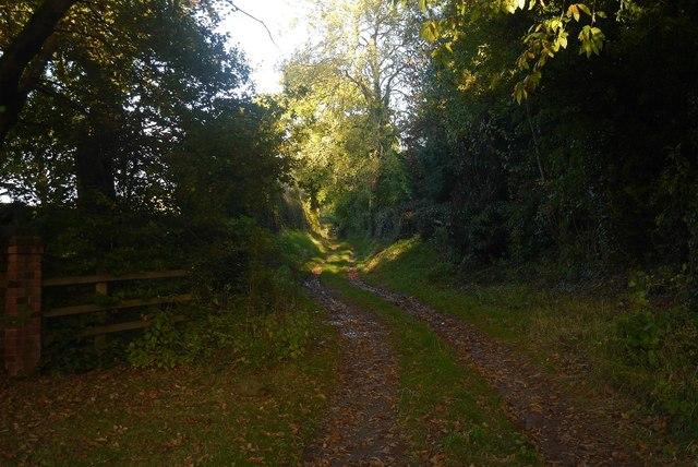 Green lane, Collington