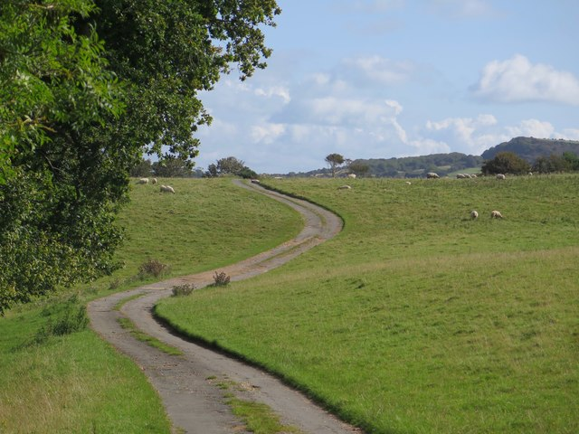 Public Footpath NT85, Wydcombe, Isle of Wight
