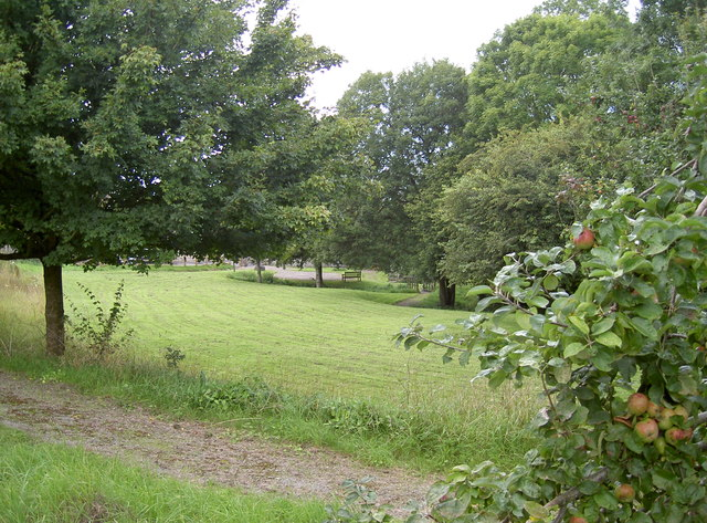 A green space