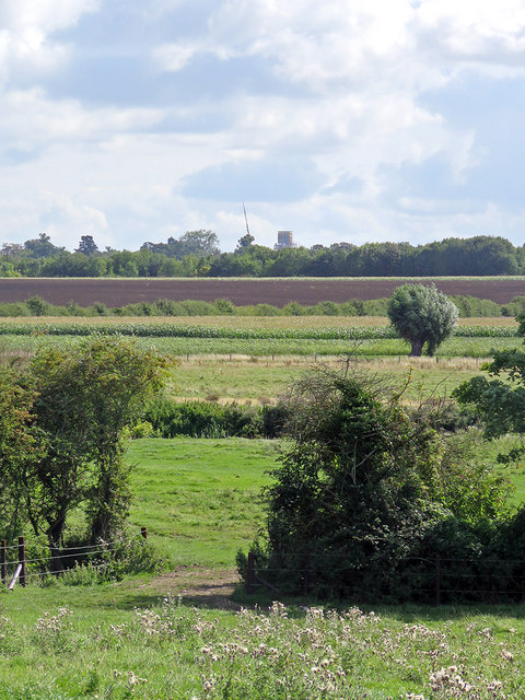 A long view from Grantchester Meadows