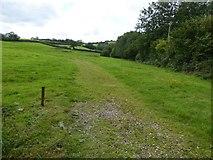 SS9011 : Track across field near Down Farm by David Smith