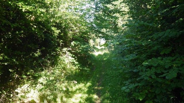 Green lane, Fenwick