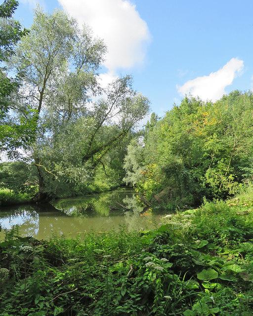 The Cam at Newnham