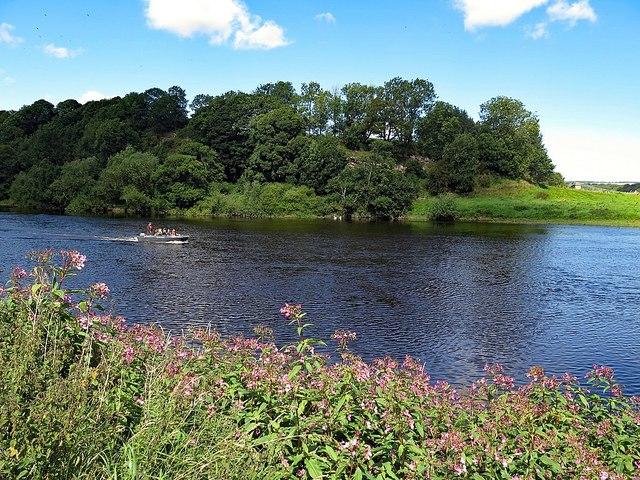 River Tweed below Horncliffe House