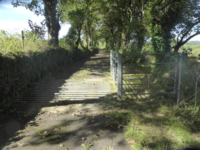 The lane to Trevider