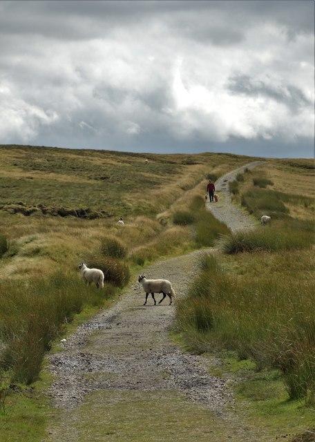 "The Pennine Way seen from ""The Tan Hill Inn"""