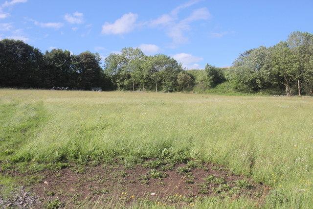 Field Next to Long Rake Calcite Mine