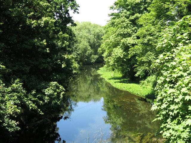 The River Colne upstream of the Iver Lane bridge