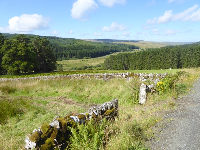 Valley of the North Tyne
