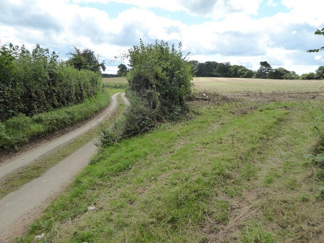 Country road and farmland at Tuckhill