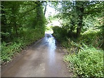 SS9110 : Small bridge over small tributary of River Dart by David Smith