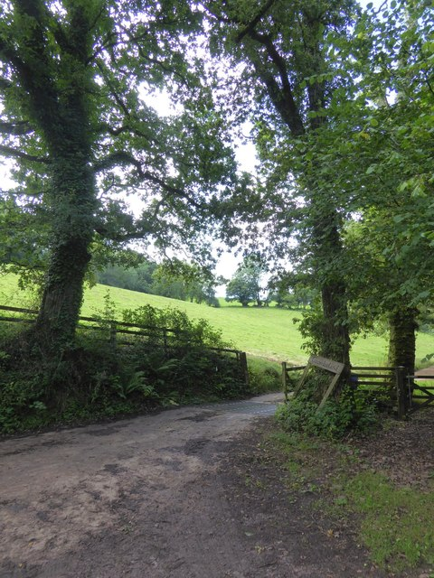 Access road to Coombeland