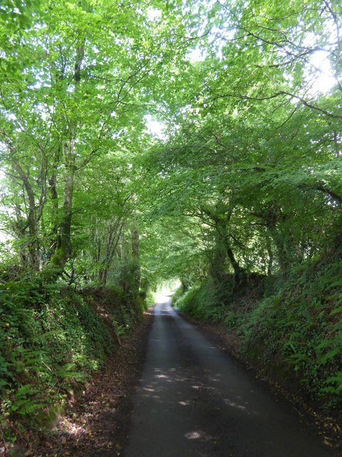 Road from the valley to Worth Farm