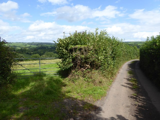Field gate and road on Blackberry Down