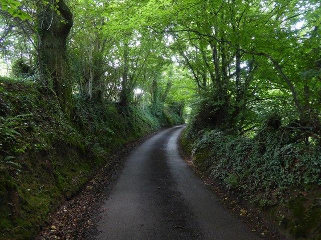 Hollow Devon lane near Kingdom's Corner