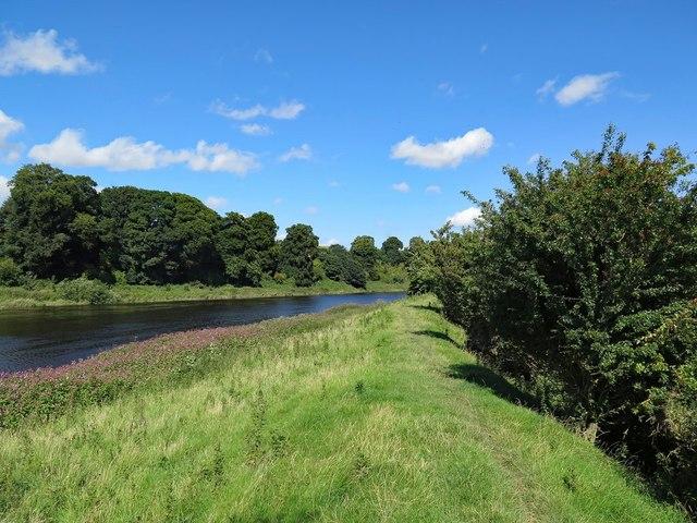 Flood defences by River Tweed