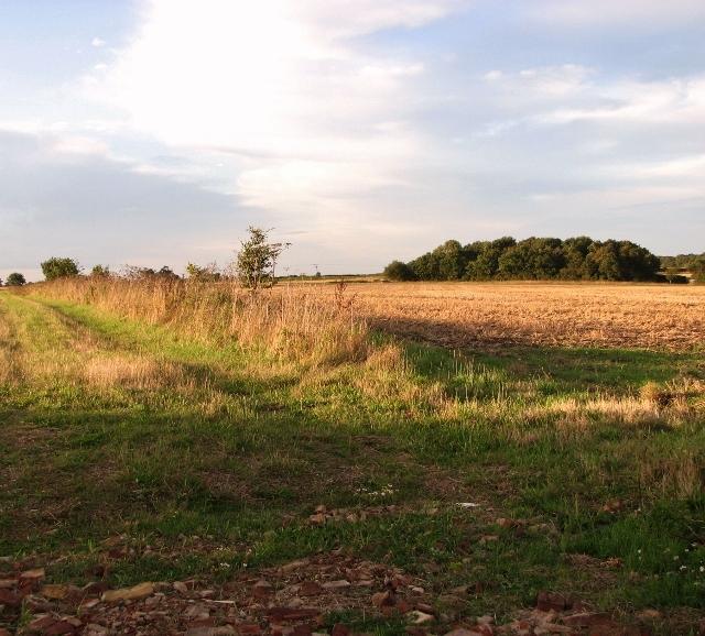 Fields north of St Edmund's Way