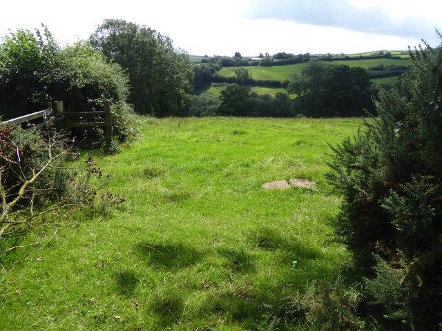 Field south of Larkey Lane