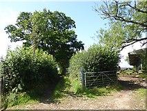 SS9109 : Farm buildings by Larkey Lane by David Smith
