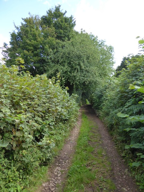 Larkey Lane close to Little Silver