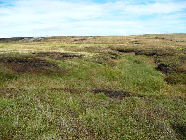 Meadowgrain Clough, Tintwistle