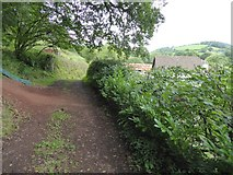 SS9209 : Path south-east of Ashilford by David Smith