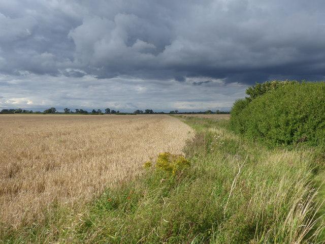 Dramatic sky on the flatlands