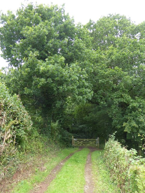 Gate into Ashilford Copse