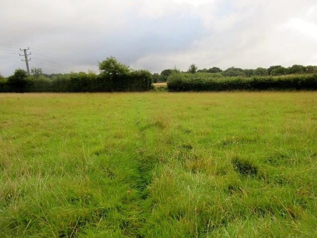 Footpath crossing field