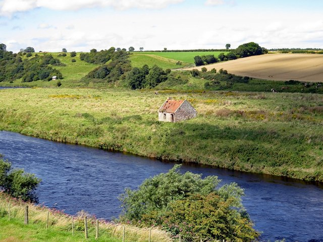 St Thomas's Island in River Tweed