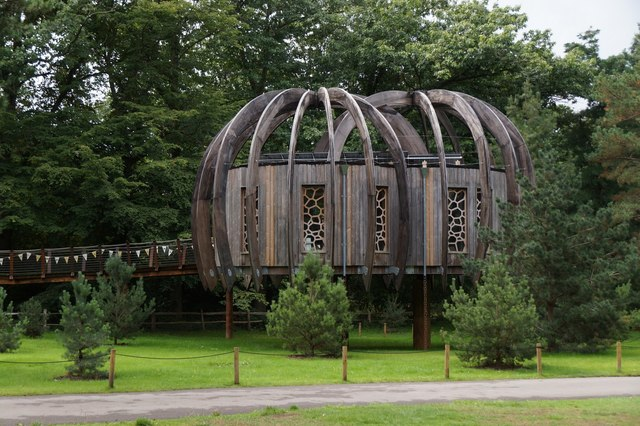 The Wood House in the Royal Botanic Gardens, Kew