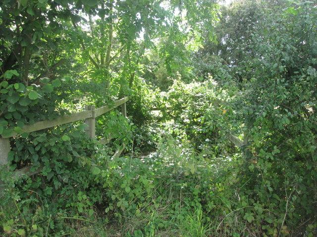 Obstructed bridleway near Rosecroft Farm