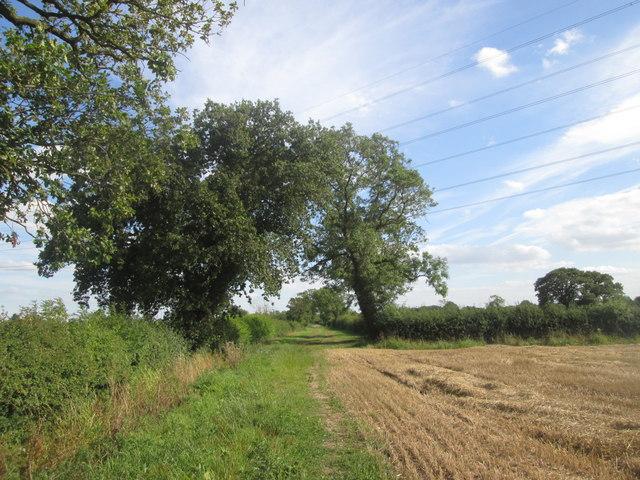 Narrow Lane, Wigginton Moor