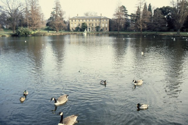Geese on The Pond, Kew Gardens