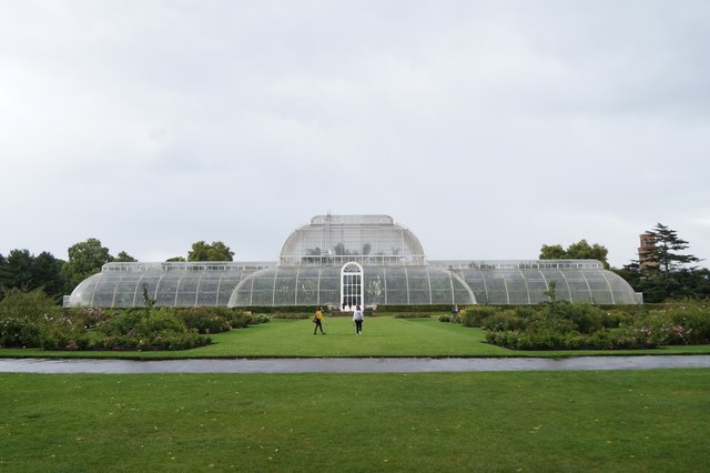 The palm house, the Royal Botanic Gardens, Kew