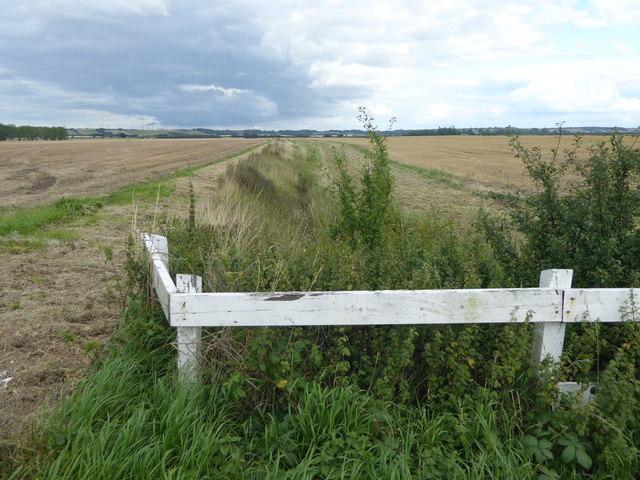 Ditch off Broughton Lane