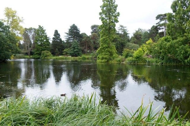 The lake, the Royal Botanic Gardens, Kew
