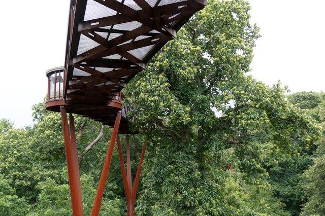The Treetop Walkway, the Royal Botanic Gardens, Kew