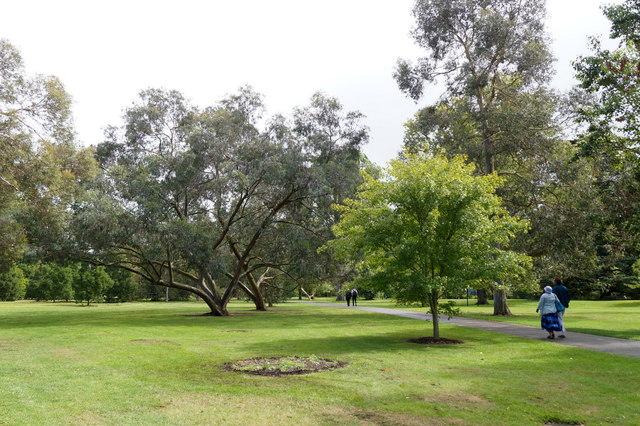 Near the Brentford Gate, the Royal Botanic Gardens, Kew