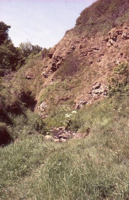 Rocky outcrop, Coldingham