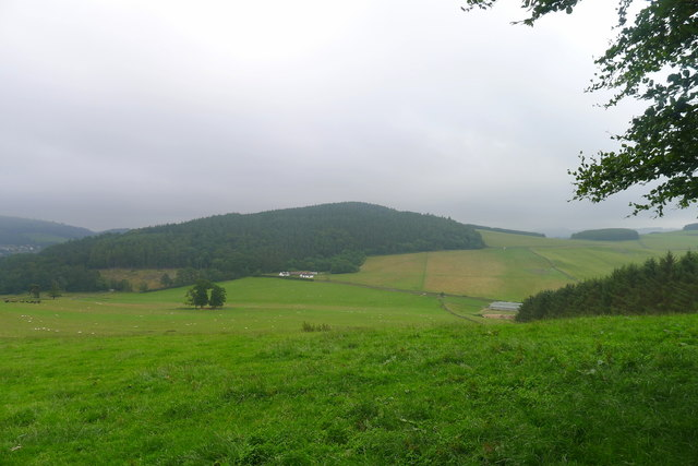 On the Southern Upland Way, looking towards Gala Hill