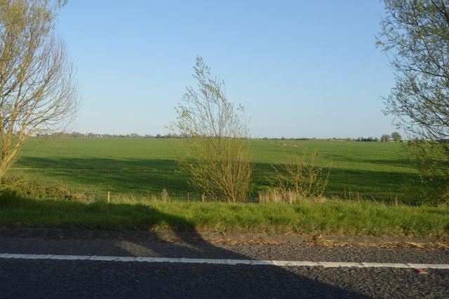 Field by A2070