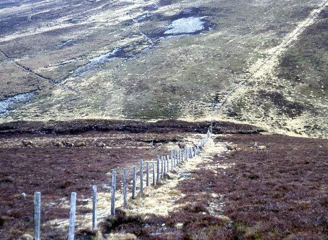 Boundary between Angus and Perth