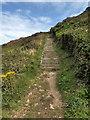 SS0897 : Steps near  Lydstep Caverns by PAUL FARMER