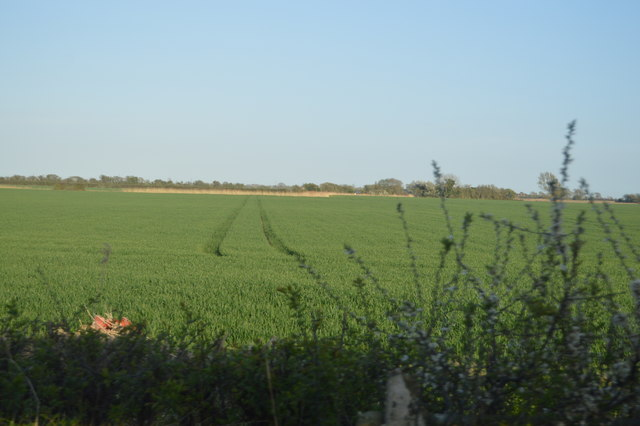 Farmland near Johnson's Corner