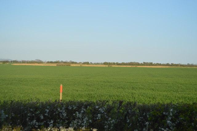 South of Ham Lees Farm